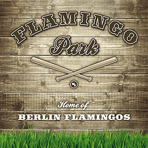 21.07.2013 Wizards vs Flamingos im Flamingo Park